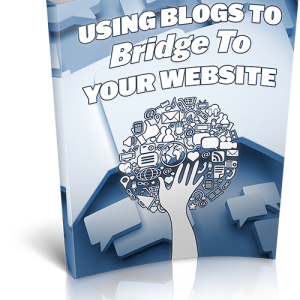 Using Blogs To Bridge To Your Website.